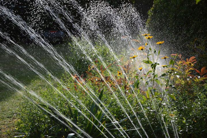 Regenwassernutzung zum Bewässern